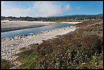 Carmel River and beach. Carmel-by-the-Sea, California, USA ( color)