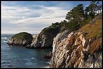 Bluff, China Cove. Point Lobos State Preserve, California, USA ( color)