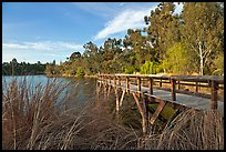 Pier and lake,  Vasona Lake County Park, Los Gatos. California, USA