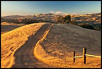 Path on crest of Evergreen Hills. San Jose, California, USA ( color)