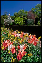 Flowers and garden shop, Filoli estate. Woodside,  California, USA ( color)