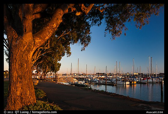 Marina at sunset, Vallejo. San Pablo Bay, California, USA