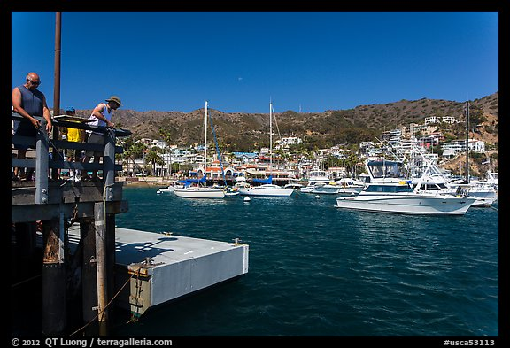 Fishing from Avalon pier, Santa Catalina Island. California, USA (color)