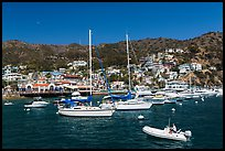Avalon Bay harbor, Santa Catalina Island. California, USA (color)