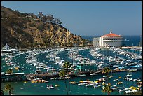 Pictures of Catalina Island