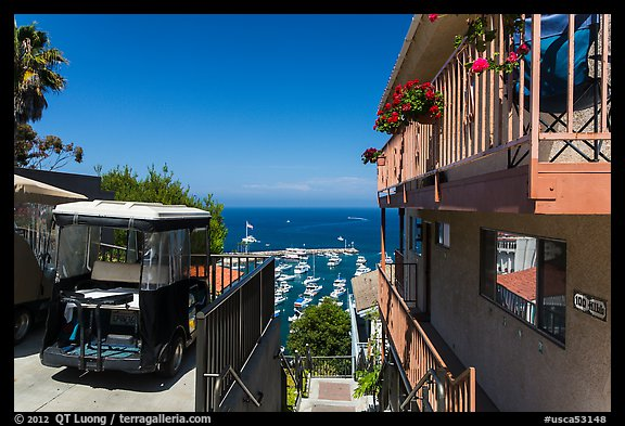 House and golf cart overlooking harbor, Avalon, Santa Catalina Island. California, USA