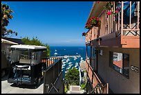 House and golf cart overlooking harbor, Avalon, Santa Catalina Island. California, USA (color)