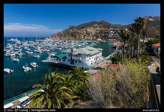 Harbor and waterfront, Avalon Bay, Catalina Island. California, USA (color)