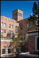 University of California at Los Angeles, Westwood. Los Angeles, California, USA ( color)