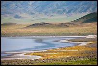 Soda Lake shore and hills from above. Carrizo Plain National Monument, California, USA ( )