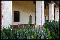 Flowers and gallery, La Purísima Mission. Lompoc, California, USA ( color)