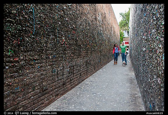 Alley lined with chewed gum left by passers-by. California, USA (color)