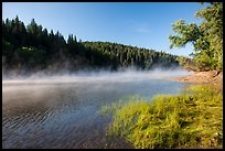 Early morning fog raising from Jenkinson Lake. California, USA ( color)