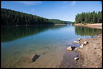 Jenkinson Lake on calm morning, Pollock Pines. California, USA ( color)