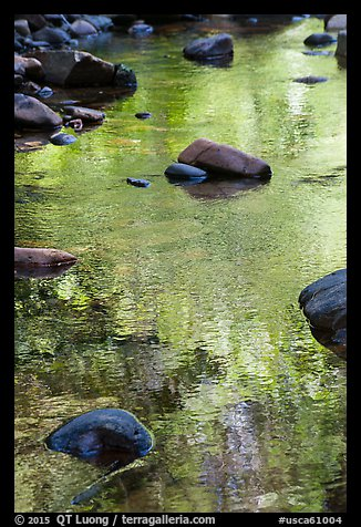 Boulders and green foliage reflection in river. California, USA (color)