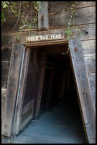 Entrance of historic Gold Bug Mine, Placerville. California, USA ( color)