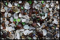 Seaglass close-up. Fort Bragg, California, USA ( color)