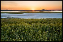 Sunset over Soda Lake in spring. Carrizo Plain National Monument, California, USA ( color)