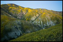Temblor Range hills in the spring, dusk. Carrizo Plain National Monument, California, USA ( color)