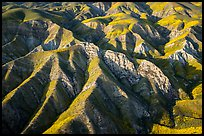 Aerial view of Temblor Range ridges in springtime. Carrizo Plain National Monument, California, USA ( color)