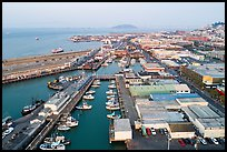 Aerial view of Fishermans Wharf fishering harbor. San Francisco, California, USA ( color)