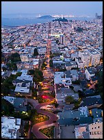 Aerial view of Lombard Street, Coit Tower, and Bay at night. San Francisco, California, USA ( color)