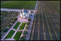 Aerial view of Concannon winery and rows of vines in summer. Livermore, California, USA ( color)
