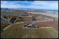 Aerial view of vineyards and wineries in autumn. Livermore, California, USA ( color)