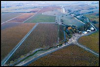 Aerial view of barns and  vineyards in autumn. Livermore, California, USA ( color)