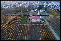 Aerial view of winery at the edge of suburban housing. Livermore, California, USA ( color)