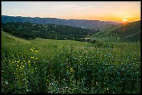 Spring Sunset over Del Valle Regional Park. Livermore, California, USA ( color)