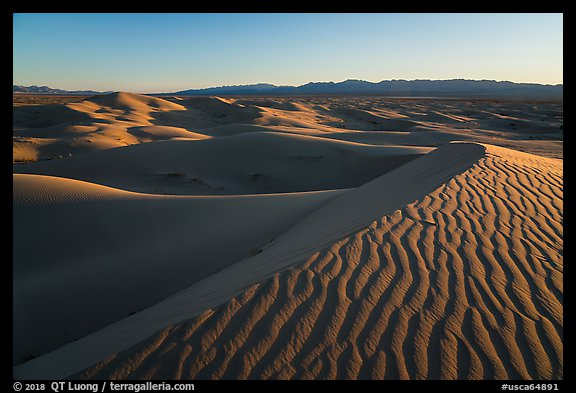 Ripples on dunes, Cadiz Sand Dunes. Mojave Trails National Monument, California, USA (color)