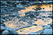 Golden reflections in Whitewater River, Whitewater Preserve. Sand to Snow National Monument, California, USA ( color)