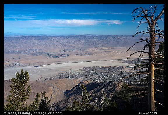 Palm Springs from Mountain Station of Aerial Tramway. California, USA (color)