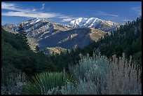 Pictures of San Gabriel Mountains National Monument