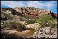 Mojave River and Afton Canyon palissades. Mojave Trails National Monument, California, USA ( )