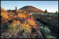 Wildflowers, Big Painted Cave entrance and Schonchin Butte at sunrise. Lava Beds National Monument, California, USA ( color)