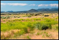 Grasslands and volcanic buttes. Lava Beds National Monument, California, USA ( color)