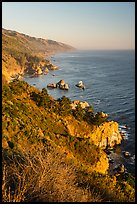 Costline from Partington Point at sunset, Julia Pfeiffer Burns State Park. Big Sur, California, USA ( color)