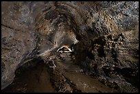 Lava tube cave, Lavic Lake volcanic field. Mojave Trails National Monument, California, USA ( )