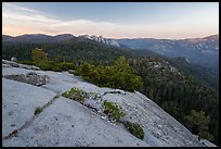 Dome Rock and Needles. Giant Sequoia National Monument, Sequoia National Forest, California, USA ( )