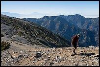 Hiker on Mt Baldy's Devils Backbone. San Gabriel Mountains National Monument, California, USA ( )