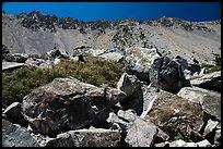 Talus Rocks and ridge, Baldy Bowl. San Gabriel Mountains National Monument, California, USA ( )