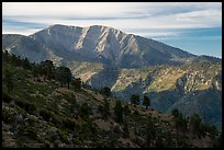 Mt Baldy from Blue Ridge. San Gabriel Mountains National Monument, California, USA ( )