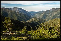 Valley between Iron Mountain and Ross Mountain from Blue Ridge. San Gabriel Mountains National Monument, California, USA ( )