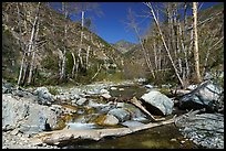 East Fork San Gabriel River flowing over rocks in late winter, Sheep Mountain Wilderness. San Gabriel Mountains National Monument, California, USA ( )