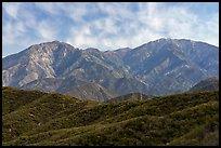 Back range mountains from Glendora Ridge. San Gabriel Mountains National Monument, California, USA ( )