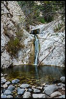 Two-tiered Lower Switzer Falls flowing into basin. San Gabriel Mountains National Monument, California, USA ( )