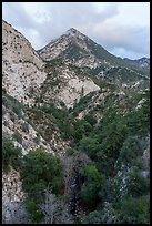 Peaks and Bear Canyon. San Gabriel Mountains National Monument, California, USA ( )