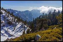Galena Peak from San Gorgonio Mountain. Sand to Snow National Monument, California, USA ( )